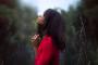 The Serenity Prayer, Bite-sized